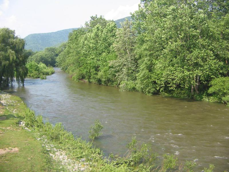 Lycoming Creek at Trout Run